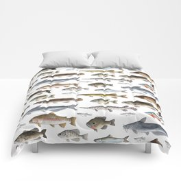 A Few Freshwater Fish Comforters