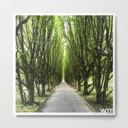 Let's take a walk, Vesterbro, Copenhagen Metal Print
