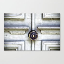 Vintagedoor Canvas Print