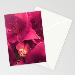 Pink Raspberry Vibrant Elegant Flowers Macro Photo Stationery Cards