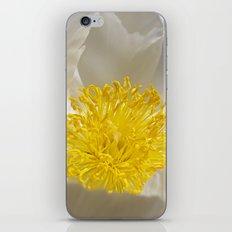 white peony iPhone & iPod Skin