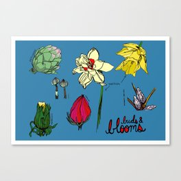 Buds and Blooms Identification Print Canvas Print