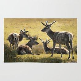 Reindeers of Scotland Rug