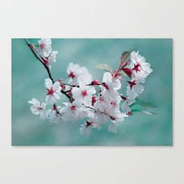Spring 150 Canvas Print