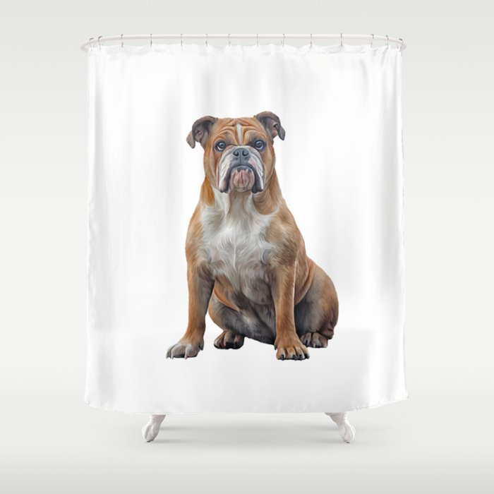 Drawing Dog Breed English Bulldog Shower Curtain By Bonidog