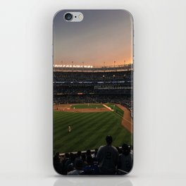 America's Pastime iPhone Skin