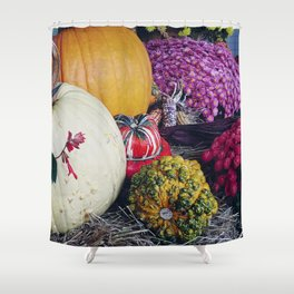 Assorted Pumpkins and Gourds for Autumn Shower Curtain