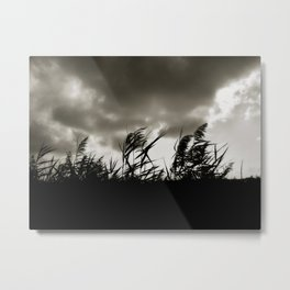 Sea Oats Metal Print