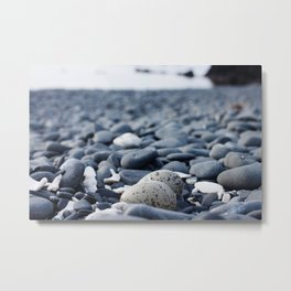 Oyster Catcher Nest Metal Print