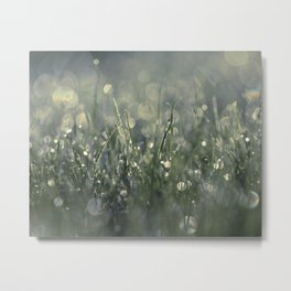 morning lights Metal Print