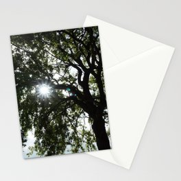 Light Through Leavs Stationery Cards