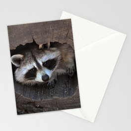 Hiding baby raccoon Stationery Cards