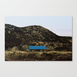 Blue relaxation Canvas Print