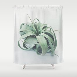 Air Plant III Shower Curtain