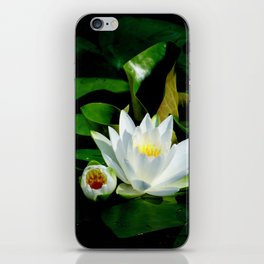 White Water Lily and Bud in Pond iPhone Skin