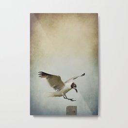 A Seagull's Landing Metal Print
