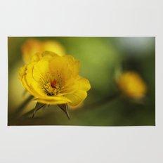 yellow. Rug