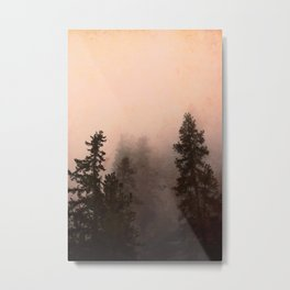 Deep in Thought - Forest Nature Photography Metal Print