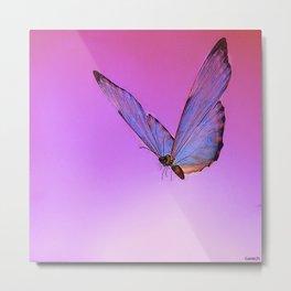 Papillon de nuit 2 Metal Print
