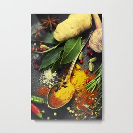 Spices and herbs. Food and cuisine ingredients. Metal Print