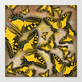 Tiger Swallowtails Canvas Print
