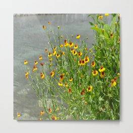 yellow flowes by the river Metal Print