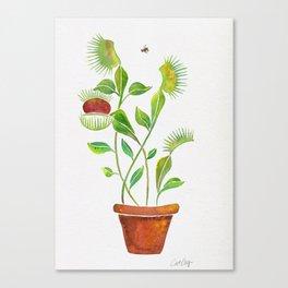 Venus Fly Trap Watercolor Canvas Print