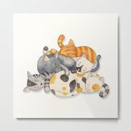 Cat Nap (Siesta Time) Metal Print