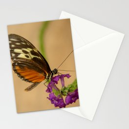 Tiger Longwing Butterfly-7 Stationery Cards