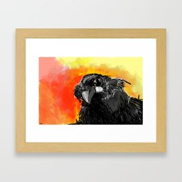 Curious Crow Framed Art Print