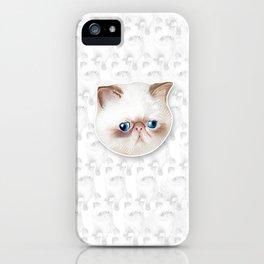 Lockhart Studley iPhone Case