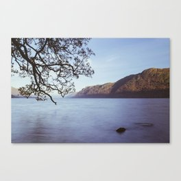 Tree over Ullswater Canvas Print