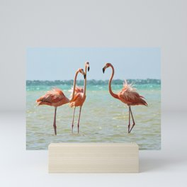 Flamingos Isla Holbox, Mexico Mini Art Print