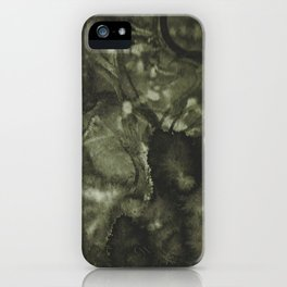 Travelling along the Coast iPhone Case