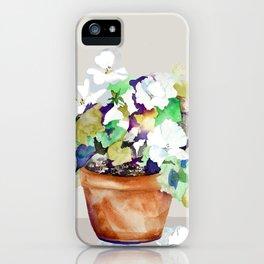 Pots of Petunias iPhone Case