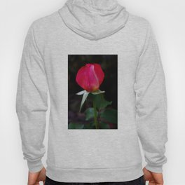 double delight rose bud  Hoody