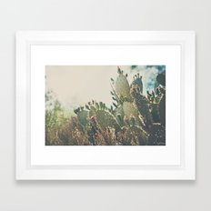 desert prickly pear cactus ... Framed Art Print
