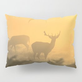 In the Clear Pillow Sham