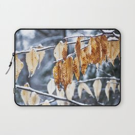 Snowy March Laptop Sleeve