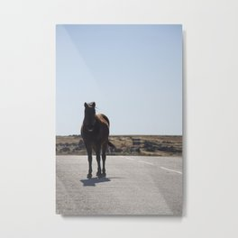 Wild Horse - Road Trip - Equine - Brown Horse - Adventure Wanderlust - Travel Photography Metal Print