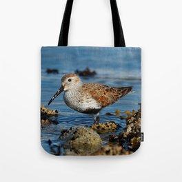 Bird on the Beach / A Solitary Dunlin Tote Bag