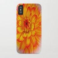 dahlia iPhone & iPod Cases featuring Dahlia by Art-Motiva