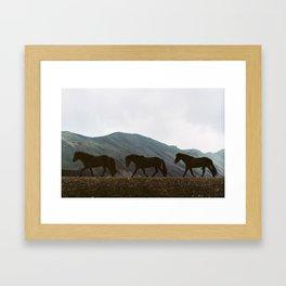 Iceland - Horses (Leica M3 & Kodak film) Framed Art Print