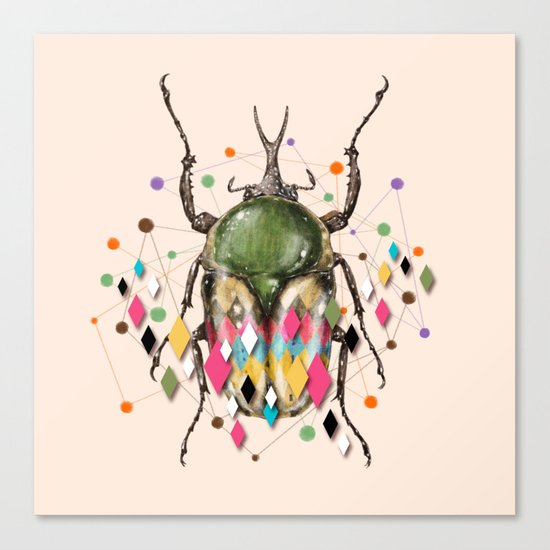 Insect VII Canvas Print