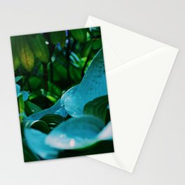 Looking from the top Stationery Cards