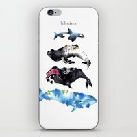 whales iPhone & iPod Skins featuring Whales by Amee Cherie Piek