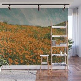 California Poppies 016 Wall Mural