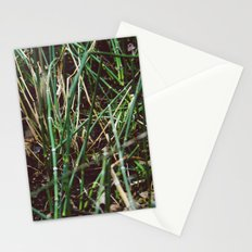 Shoots Stationery Cards