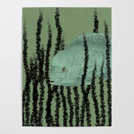 Under water Funky Fish Poster