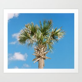 """Happy Palm"" Art Print"